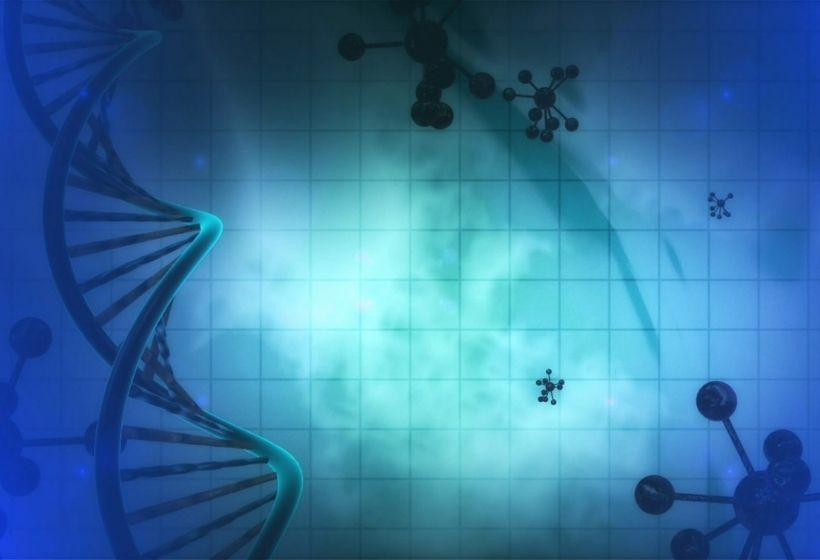 How Does Medical Signaling Cells Therapy Work?